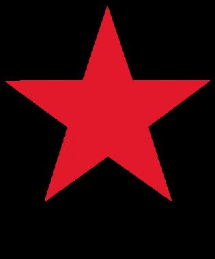 macys_logo-315x378